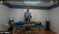 Pet Relief Disc Improve Muscle Strength